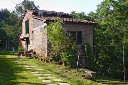 chiarella - Monte Santa Maria Tiberina