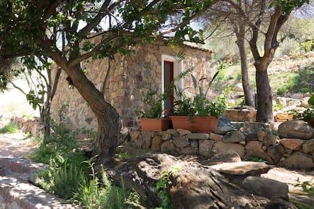 Casetta tipica sarda per una vacanza relax - Badesi - Casa