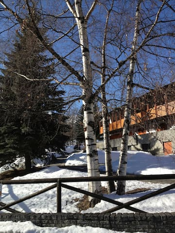 In front of the sky slopes  - Bardonecchia - Apartament