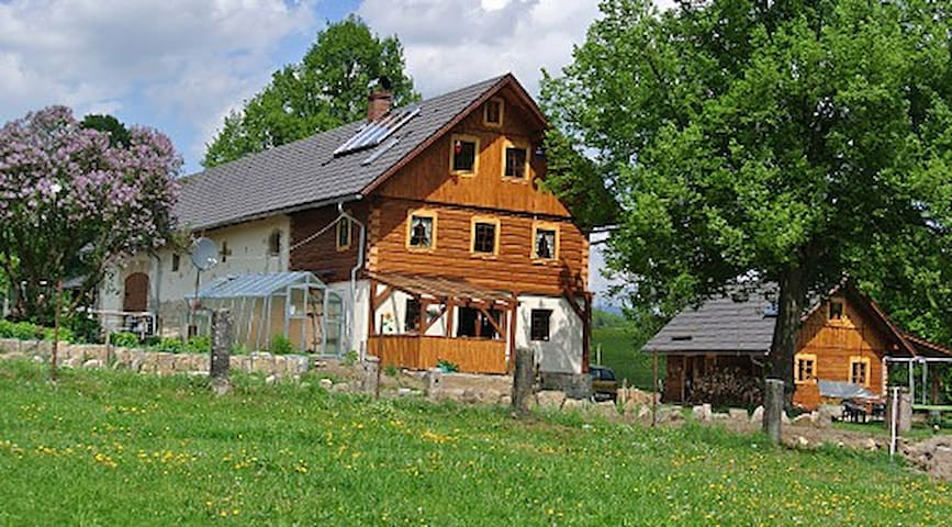 Agrotouristic Farm-cozy rooms - Cetenov - Cabin