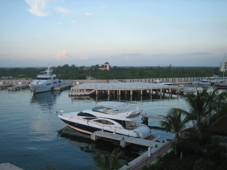 Vista de la Marina y de los Manglares