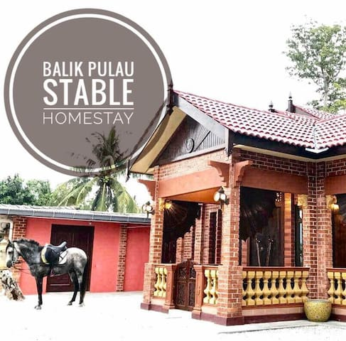 Balik Pulau Stable Homestay. Malay Lifestyle