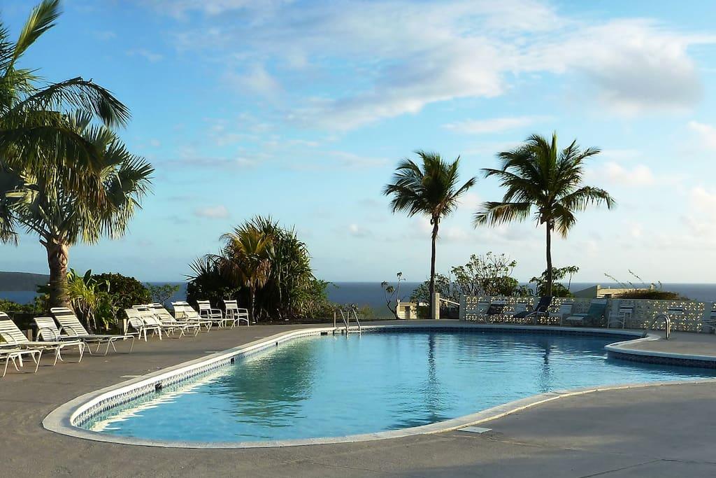 Disc Golf Us Virgin Islands