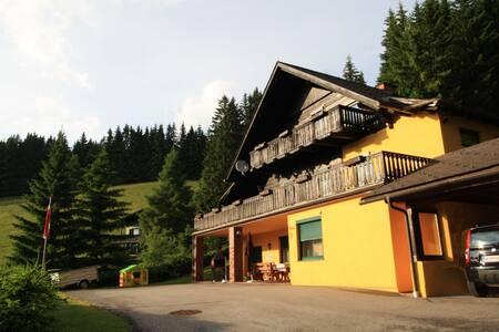 Comfortable Mansion in Wolfsberg near Ski Area