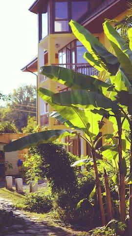 Дом4 на Лесной в Пицунде у моря - Пицунда - Bed & Breakfast