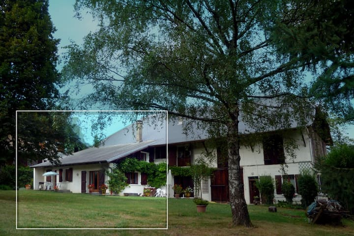 Maison familiale, 10 min d' Annecy - Seynod - Huis