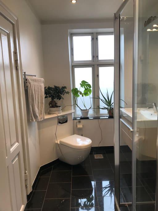Newly renovated bathroom with heated floor.