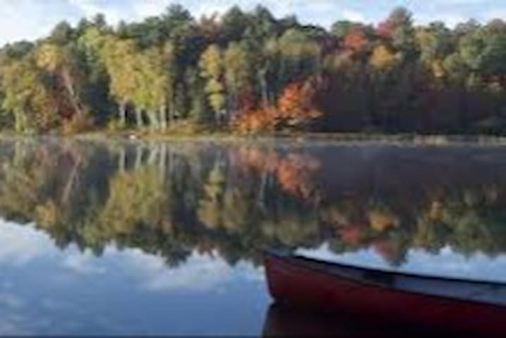 Muskoka, Lake of Bays, Dwight  Foxcottage rental