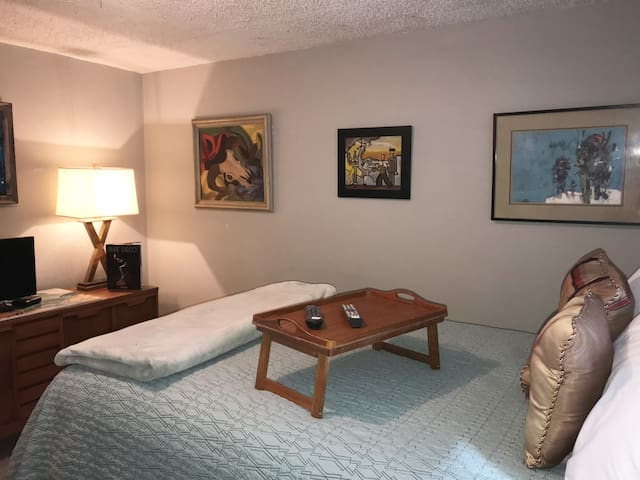 Centrally located Private Suite Denver