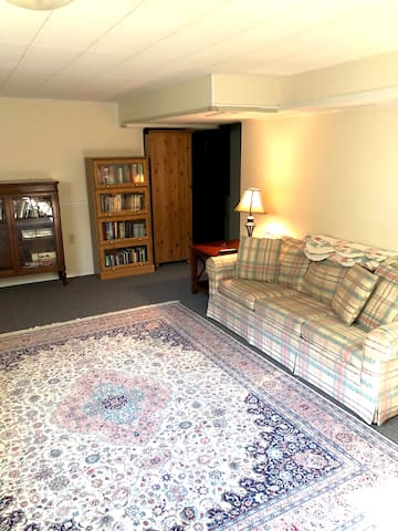 Large semi-private living room with TV, Desk, pullout sofa (Queen size). It's only semi-private because we need to get to the Washer once a week.