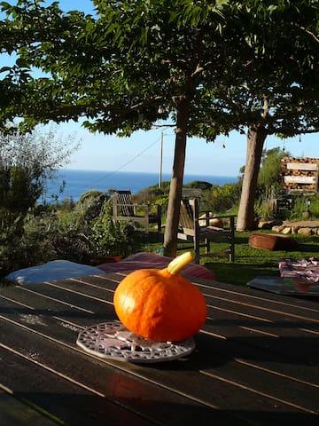 Maison  Corsica - Coti-Chiavari - Casa