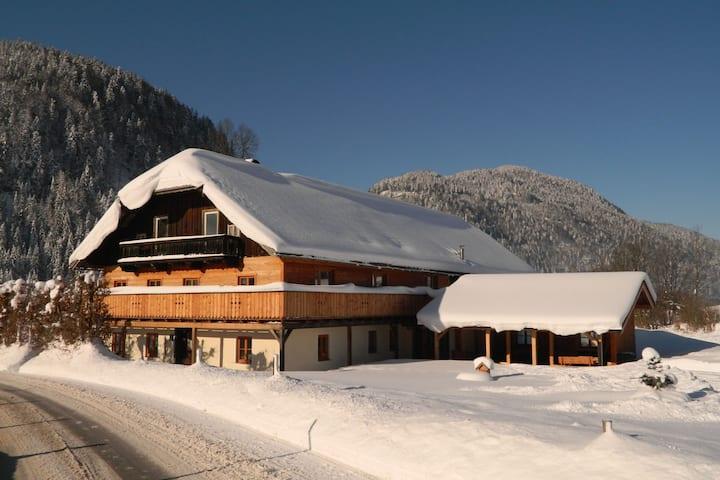 Cozy Farmhouse in Abtenau near Ski Area