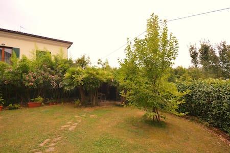 Relax a pochi km dal centro di Treviso - Carbonera - Apartment