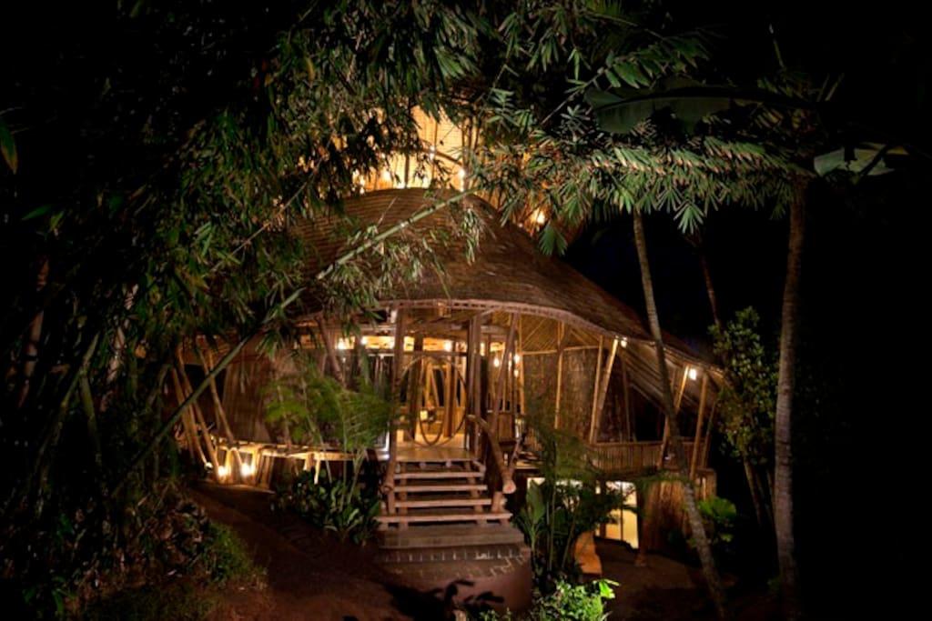 Palm Villa at night
