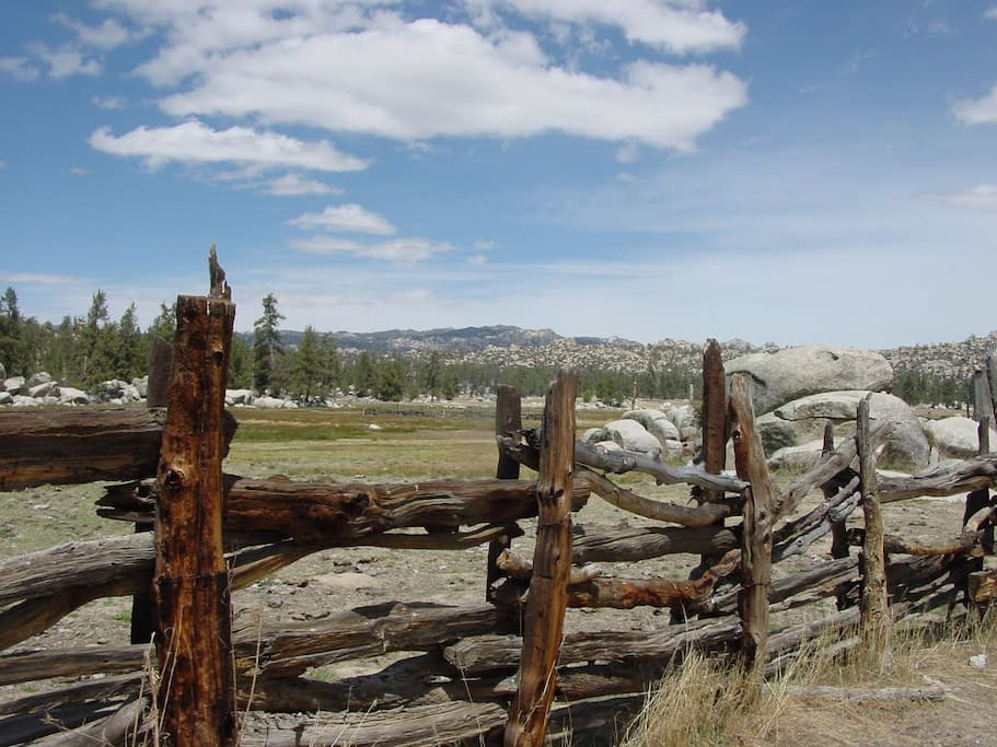 Rustic Cattle fences on the property