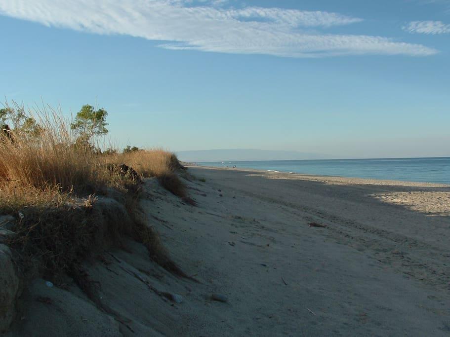 Spiagge infinite e libere.............