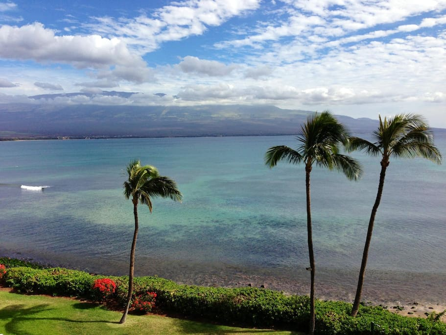 This is the actual view from your private lanai.