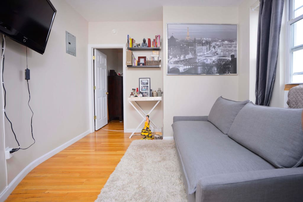 1 BDRM Apt Astoria Weekend Sublease Apartments For Rent In Long Island City
