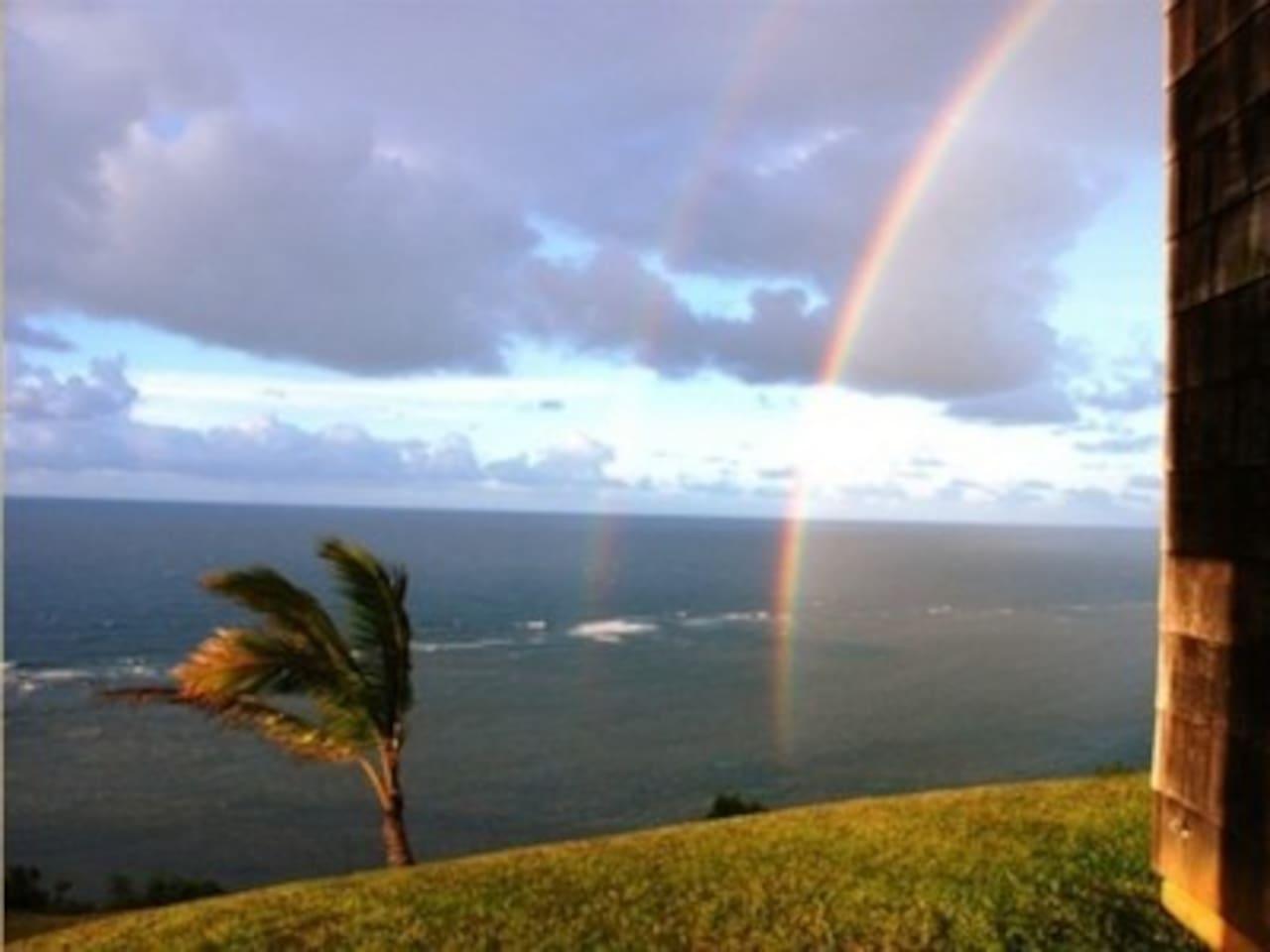 Amazing Ocean Front - 'Hale Honu'