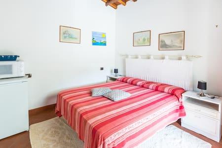 Monolocale in Sardegna
