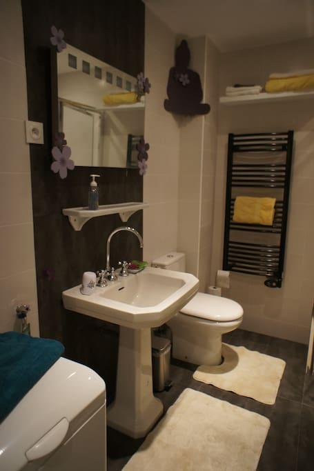 Salle de bains / Toilettes et douche