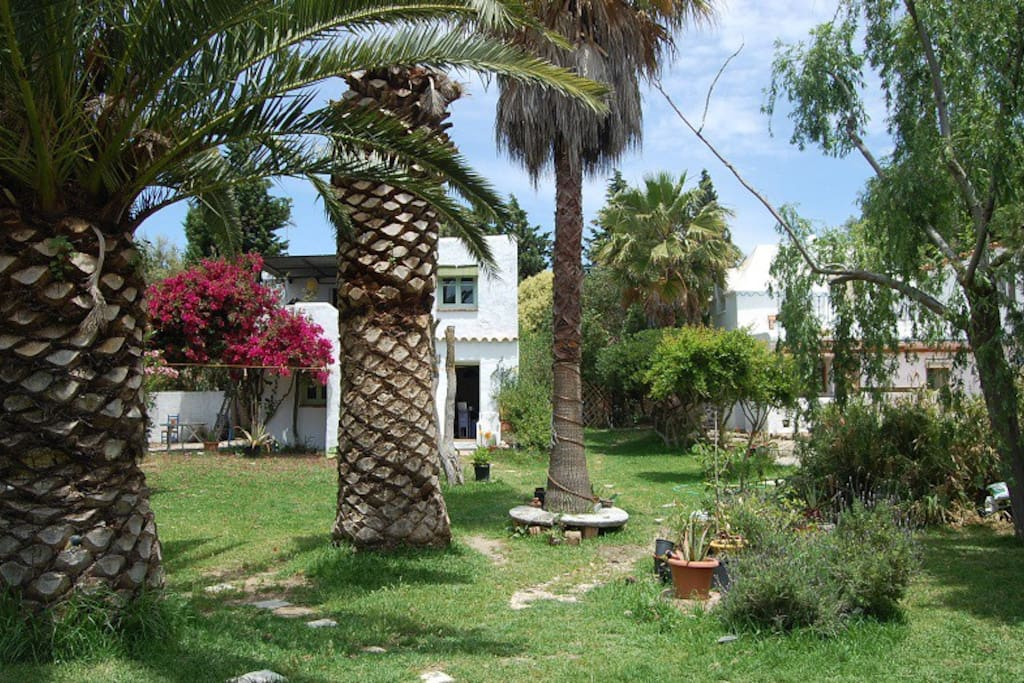 Casa Canas - Communal garden