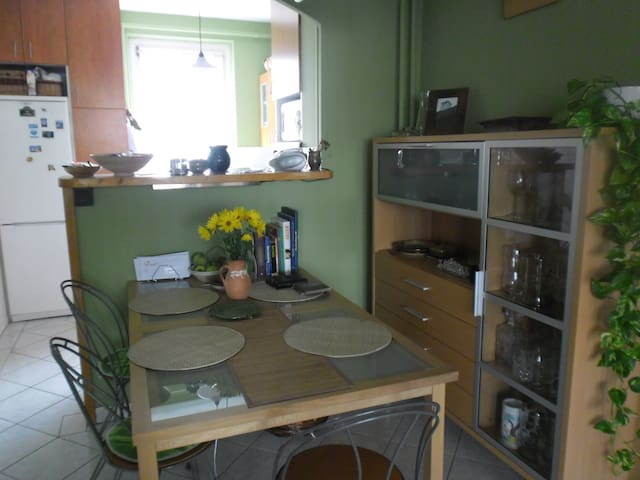 Spacious flat close to the Danube - Budapest - Wohnung