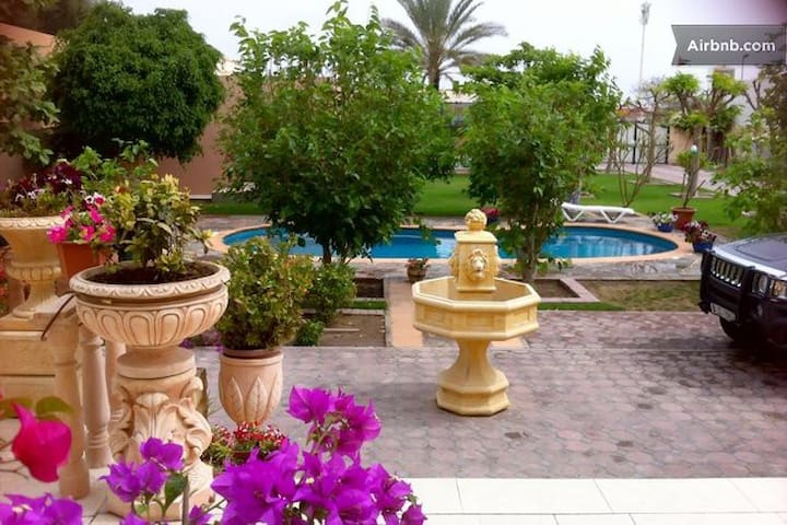 Be My Guest In Jumeirah- (B) - Dubai - Appartement