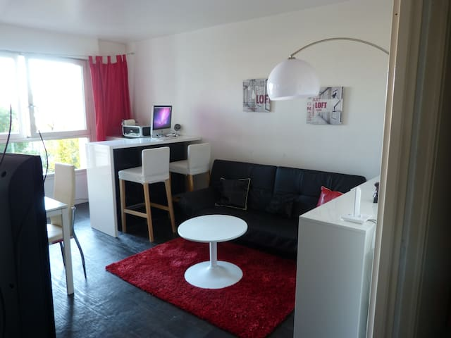 Big room for rent for 1 or 2 people - Issy-les-Moulineaux - Daire