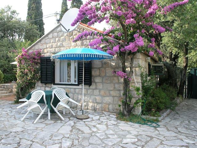 Kucica Maslina - Dubrovnik - Hus