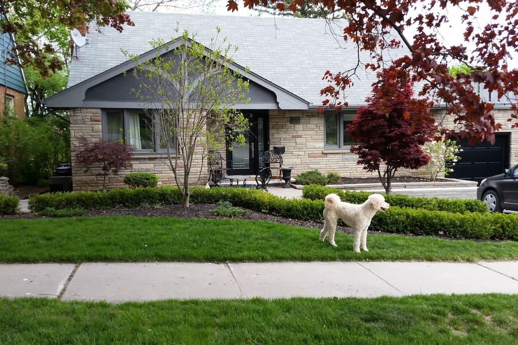 Suite Retreat Apartments For Rent In Peterborough
