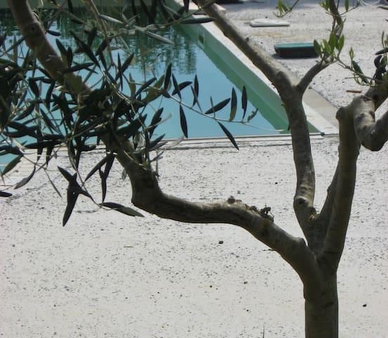 Nuovissimo bilocale con giardino e piscina al mare - Vada - อพาร์ทเมนท์