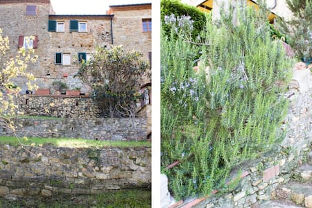 Great house in real Tuscan paradise - Casale Marittimo