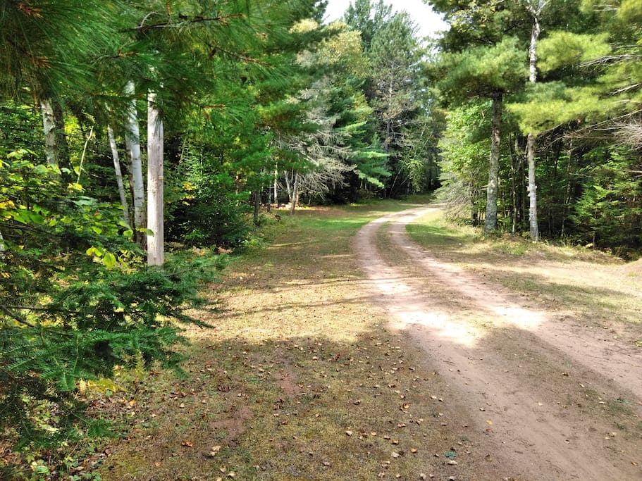 Private drive to 50 acres of wooded hunting land