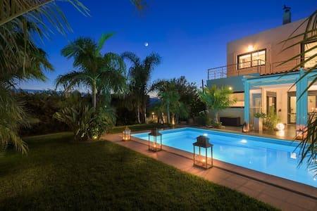 Villa Palm Garden - Afantou
