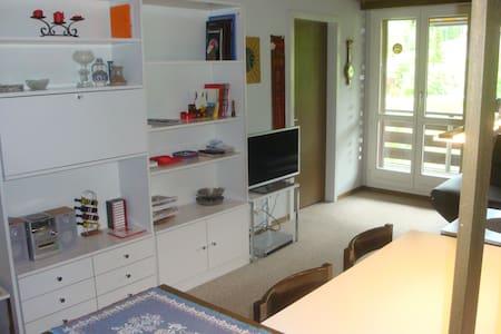 Charming apartment in the Alps - Leilighet