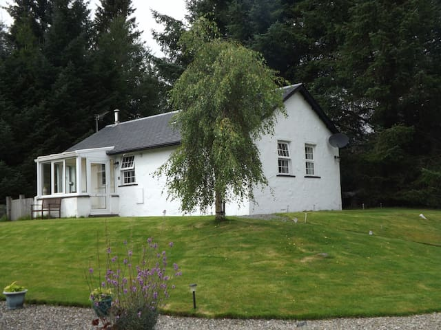 Dog friendly cosy and secluded Cottage