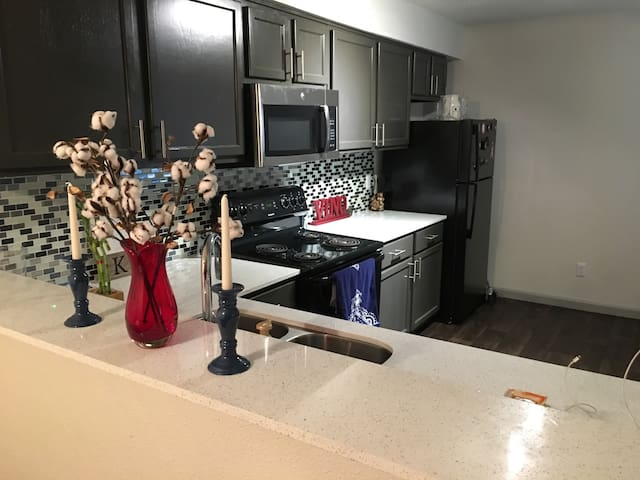 Updated 2 BR Apt near Stadiums
