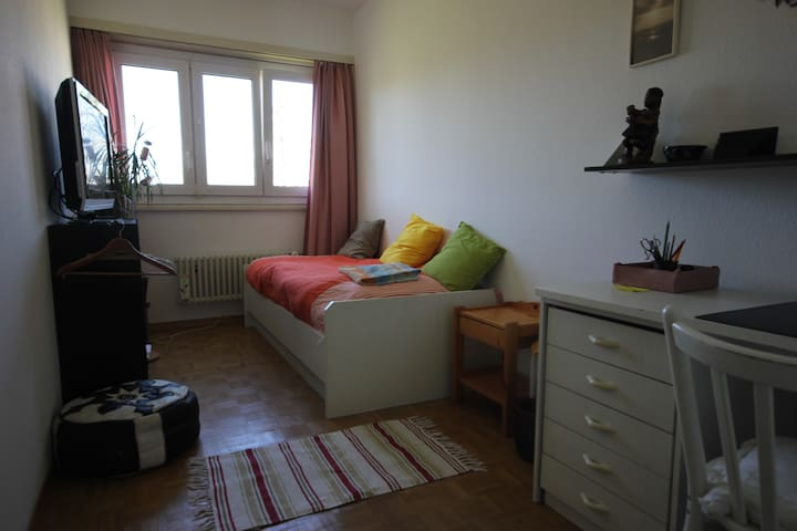 Cosy room in a spacious appartment - Versoix - Leilighet