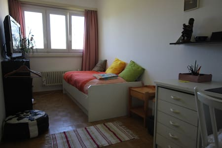 Cosy room in a spacious appartment - Versoix