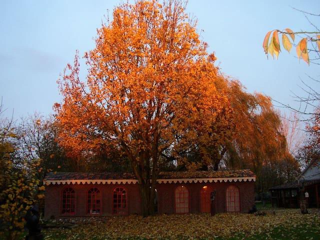 Beeldig Huisje in beeldentuin in Noord Limburg - Well - Houten huisje