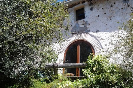 Traditional country house(Masia)