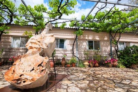 Unit in Isreals Smallest Kibbutz 3 - קיבוץ ענבר - Bed & Breakfast