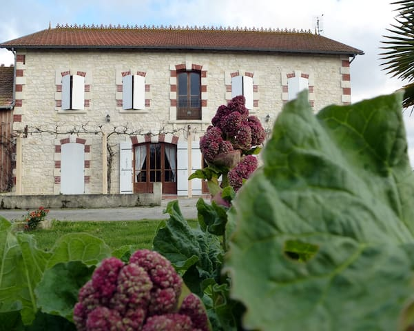 Perfect cottage for 12 persones - Mortagne-sur-Gironde - House