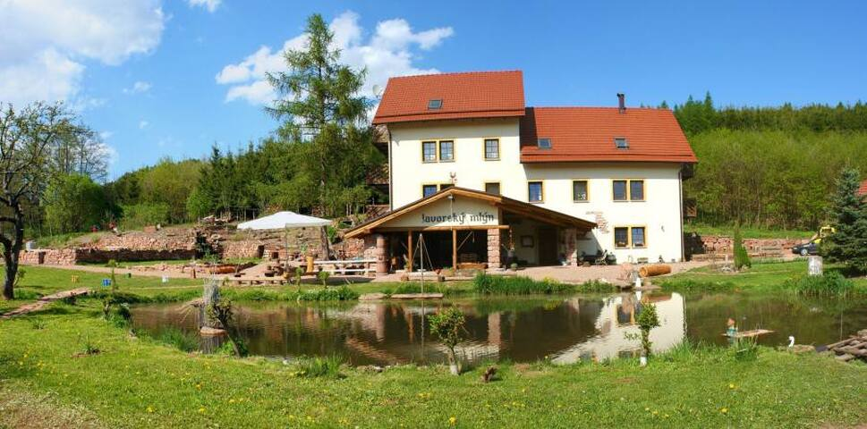 Relax in beautiful nature - Lázně Bělohrad - Bed & Breakfast