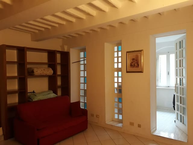 Entire nice apartment in center of Siena.