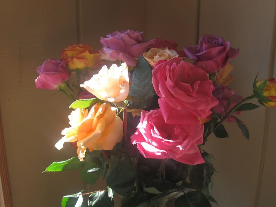 Flowers from the garden in Spring....