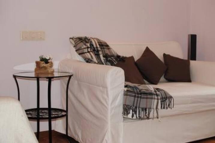 Квартира на Грибоедова/Невский пр.