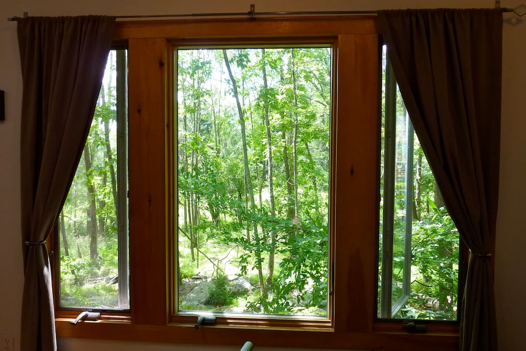 Forest views from the spacious bedroom