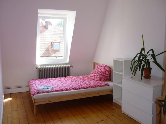 großes, zentrales Zimmer in charmanter Wohnung - Freiburg im Breisgau - Apartment